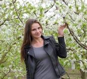 Όμορφο νέο κορίτσι νεράιδων σε έναν ανθίζοντας κήπο δαμάσκηνων Το πορτρέτο ενός κοριτσιού σε ένα λευκό ανθίζει το υπόβαθρο Στοκ εικόνες με δικαίωμα ελεύθερης χρήσης