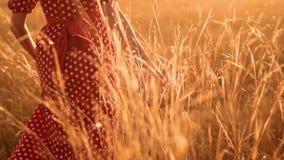Όμορφο νέο κορίτσι που περπατά στον τομέα με τα wildflowers, που απολαμβάνουν το σε αργή κίνηση βίντεο φύσης υπαίθρια κορίτσι στο απόθεμα βίντεο
