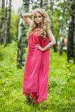 Όμορφο νέο κορίτσι σε ένα θερινό φόρεμα στο ηλιοβασίλεμα Φωτογραφία μόδας στο δασικό πρότυπο σε ένα ρόδινο μακρύ φόρεμα, με τη ρέ στοκ φωτογραφίες