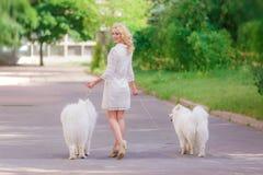 Όμορφο νέο ξανθό κορίτσι στο φόρεμα που περπατά με δύο άσπρα χνουδωτά σκυλιά στο θερινό κήπο Στοκ φωτογραφία με δικαίωμα ελεύθερης χρήσης
