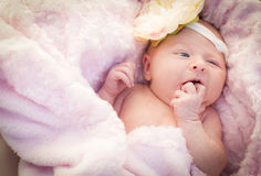 Όμορφο νεογέννητο κοριτσάκι που βάζει στο μαλακό κάλυμμα Στοκ Εικόνες