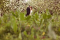 όμορφο νυφικό ζεύγος Στοκ φωτογραφία με δικαίωμα ελεύθερης χρήσης