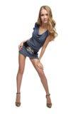 όμορφο ξανθό ευρωπαϊκό κορ στοκ εικόνα με δικαίωμα ελεύθερης χρήσης