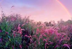 όμορφο ουράνιο τόξο στοκ φωτογραφία με δικαίωμα ελεύθερης χρήσης