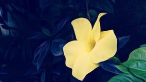 όμορφο λουλούδι κίτρινο Στοκ Εικόνες