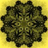 Όμορφο λουλούδι mandala Διακοσμητικό στρογγυλό floral αντικείμενο Στοκ Φωτογραφίες