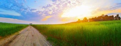 όμορφο οδικό καλοκαίρι ημέρας επαρχίας Στοκ εικόνες με δικαίωμα ελεύθερης χρήσης
