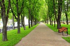 Όμορφο πάρκο με τη συμπαθητική πορεία περιπάτων και τα μεγάλα πράσινα δέντρα Στοκ φωτογραφία με δικαίωμα ελεύθερης χρήσης
