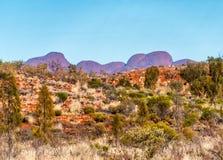 Όμορφο πάρκο της Βόρεια Περιοχής, αυστραλιανός εσωτερικός Στοκ Εικόνα