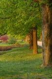 όμορφο πάρκο Στοκ Φωτογραφίες