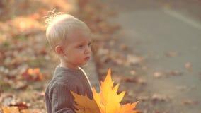 Όμορφο παιδί φθινοπώρου στο υπόβαθρο φύσης πτώσης Φθινόπωρο παιδιών Παιχνίδι στο δασικό μικρό παιδί φθινοπώρου το φθινόπωρο απόθεμα βίντεο