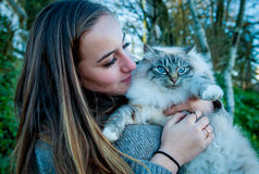 Όμορφο παιχνίδι κοριτσιών με μια διασωθείσα περιπλανώμενη γάτα Στοκ φωτογραφίες με δικαίωμα ελεύθερης χρήσης