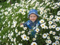 Όμορφο παιδί στο λουλούδι-κρεβάτι των camomiles Στοκ εικόνα με δικαίωμα ελεύθερης χρήσης