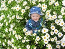 Όμορφο παιδί στο λουλούδι-κρεβάτι των camomiles Στοκ Εικόνα