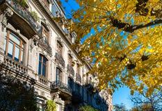 Όμορφο παλαιό ακριβό σπίτι στο κέντρο του Στρασβούργου, εικονική παράσταση πόλης, Γαλλία στοκ φωτογραφία με δικαίωμα ελεύθερης χρήσης