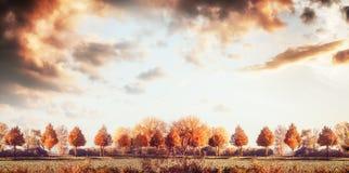 Όμορφο πανόραμα τοπίων φθινοπώρου με τα δέντρα, τον τομέα και τον ουρανό Υπαίθρια φύση πτώσης Στοκ Εικόνες
