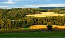 όμορφο πεδίο Στοκ εικόνα με δικαίωμα ελεύθερης χρήσης