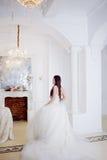 όμορφο πορτρέτο νυφών γάμος κορδελλών πρόσκλησης λουλουδιών κομψότητας λεπτομέρειας διακοσμήσεων ανασκόπησης Πολυτελές ελαφρύ εσω Στοκ Εικόνα