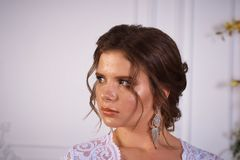 Όμορφο πορτρέτο brunette σε ένα φόρεμα bodoir Στοκ Φωτογραφία