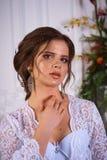 Όμορφο πορτρέτο brunette σε ένα φόρεμα bodoir Στοκ φωτογραφία με δικαίωμα ελεύθερης χρήσης
