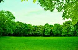 Όμορφο πράσινο πάρκο με το μπλε ουρανό στοκ εικόνα