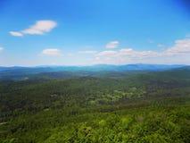 Όμορφο πράσινο τοπίο του δάσους της Σλοβενίας Στοκ εικόνα με δικαίωμα ελεύθερης χρήσης