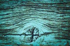 Όμορφο πράσινο grunge φύσης και βρώμικο ξύλινο υπόβαθρο σύστασης Στοκ Εικόνα