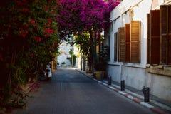 Όμορφο προαύλιο στο Τελ Αβίβ Στοκ φωτογραφία με δικαίωμα ελεύθερης χρήσης