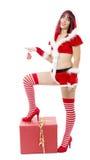 Όμορφο προκλητικό κορίτσι στα κοστούμια Χριστουγέννων που θέτουν στο άσπρο backgr Στοκ εικόνες με δικαίωμα ελεύθερης χρήσης