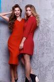 Όμορφο προκλητικό τέλειο σώμα γυναικείου ύφους επιχειρησιακών δύο γυναικών Στοκ φωτογραφία με δικαίωμα ελεύθερης χρήσης