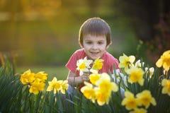 Όμορφο προσχολικό παιδί, αγόρι, που κάθεται μεταξύ των λουλουδιών daffodil Στοκ Εικόνες