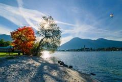 όμορφο πρωί λιμνών Στοκ φωτογραφίες με δικαίωμα ελεύθερης χρήσης