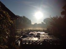 Όμορφο πρωί Στοκ Φωτογραφία