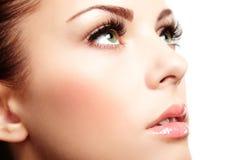 Όμορφο πρόσωπο γυναικών. Τέλειο makeup στοκ εικόνα με δικαίωμα ελεύθερης χρήσης