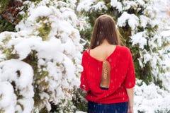 Όμορφο πρότυπο νέων κοριτσιών το χειμώνα σε ένα σταθμευμένο πάρκο σε ένα κόκκινο πουλόβερ Στοκ Φωτογραφίες