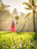 Όμορφο πρότυπο στο κόκκινο φόρεμα στο πεζούλι 13 ρυζιού Tegalalang Στοκ φωτογραφία με δικαίωμα ελεύθερης χρήσης