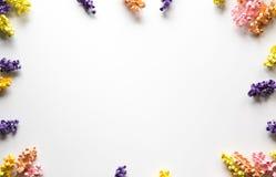 Όμορφο πλαίσιο λουλουδιών εγγράφου Στοκ Εικόνα