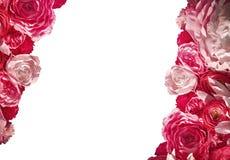 Όμορφο πλαίσιο των κόκκινων λουλουδιών και της θέσης για το κείμενο Στοκ Φωτογραφίες