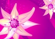 όμορφο ροζ λουλουδιών διανυσματική απεικόνιση