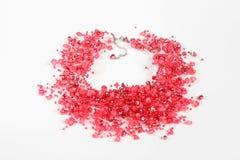 όμορφο ροζ μαργαριταριών π& Στοκ εικόνα με δικαίωμα ελεύθερης χρήσης