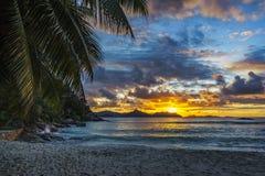 Όμορφο ρομαντικό ηλιοβασίλεμα στην παραλία παραδείσου στο anse αυστηρό, Λα δ Στοκ Εικόνα