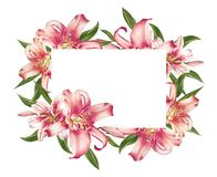 Όμορφο ρόδινο πλαίσιο φωτογραφιών κρίνων floral r Floral τυπωμένη ύλη Σχέδιο δεικτών διανυσματική απεικόνιση
