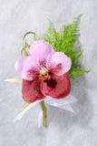 Όμορφο ρόδινο orchid κορσάζ Στοκ φωτογραφία με δικαίωμα ελεύθερης χρήσης