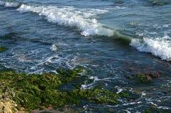 Όμορφο σισιλιάνο Seascape, Μεσόγειος, Donnalucata, Scicli, Ραγκούσα, Ιταλία, Ευρώπη στοκ φωτογραφία με δικαίωμα ελεύθερης χρήσης