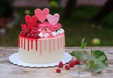 Όμορφο σπιτικό κέικ με τα ρόδινα και κόκκινα μούρα κρέμας και σμέουρων Στοκ εικόνες με δικαίωμα ελεύθερης χρήσης
