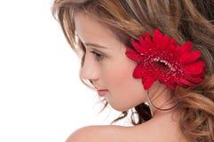 όμορφο στενό κόκκινο κορι Στοκ Φωτογραφία