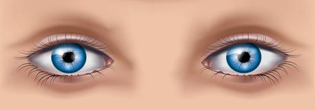 όμορφο στενό πρόσωπο ματιών - επάνω γυναίκα Στοκ Φωτογραφία