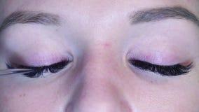όμορφο στενό πρόσωπο ματιών - επάνω γυναίκα Cosmetologist που κτενίζει eyelashes απόθεμα βίντεο