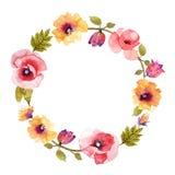 Όμορφο στεφάνι watercolor λουλουδιών Στοκ Εικόνες