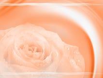 όμορφο σχέδιο ανασκόπηση&sigma Στοκ εικόνες με δικαίωμα ελεύθερης χρήσης